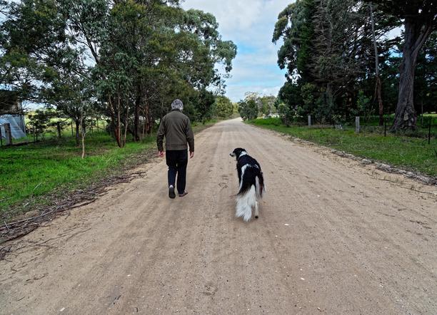 Greg-and-dogs-11.jpeg