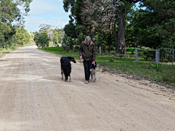 Greg-and-dogs-2.jpeg