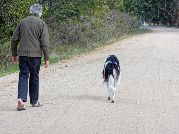 Greg-and-dogs-20.jpeg