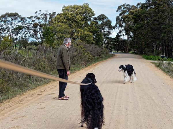 Greg-and-dogs-22.jpeg