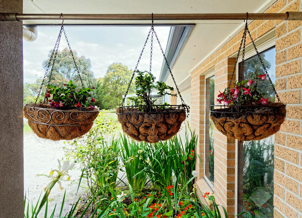 Hanging-baskets.jpeg