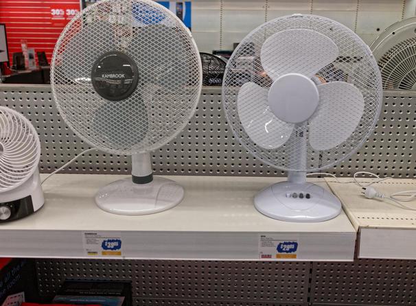 Fans-2.jpeg