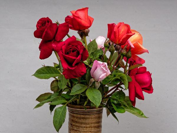 Rose-bouquet-1.jpeg