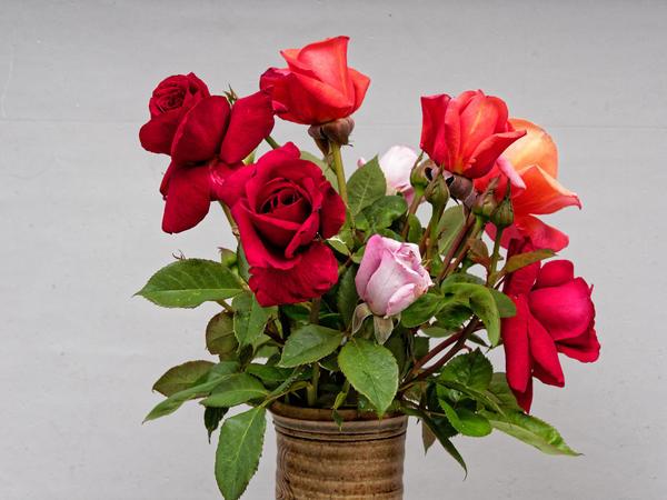 Rose-bouquet-2.jpeg
