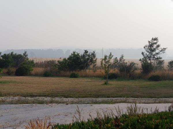 Smoke-haze-2.jpeg
