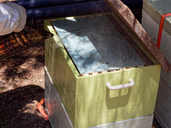 Inspecting-beehives-16.jpeg