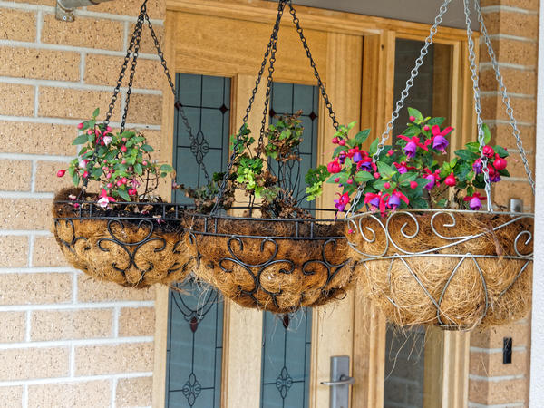 Hanging-baskets-1.jpeg