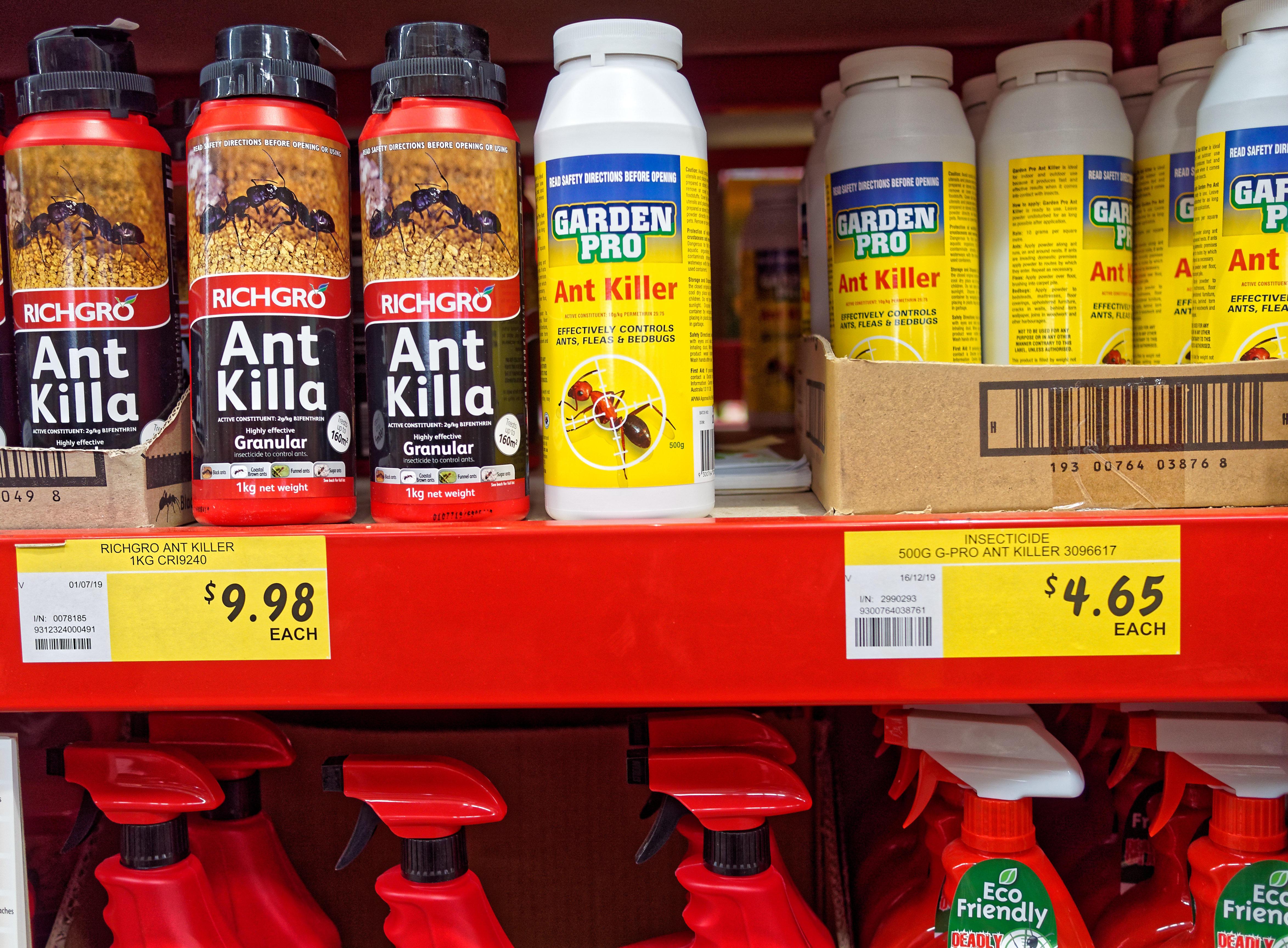 Ant-killer-1.jpeg