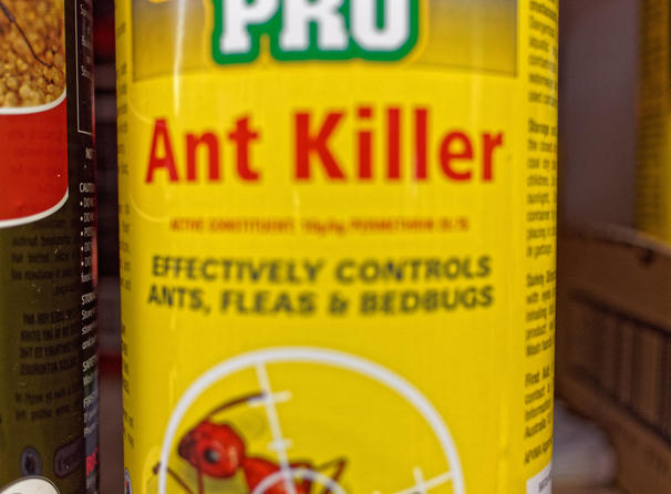Ant-killer-3.jpeg
