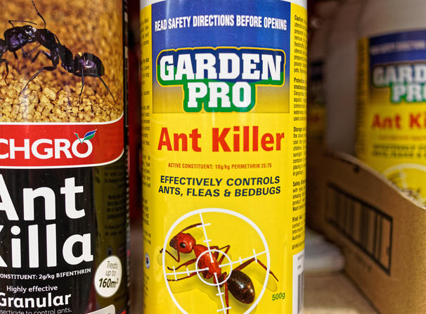 Ant-killer-4.jpeg