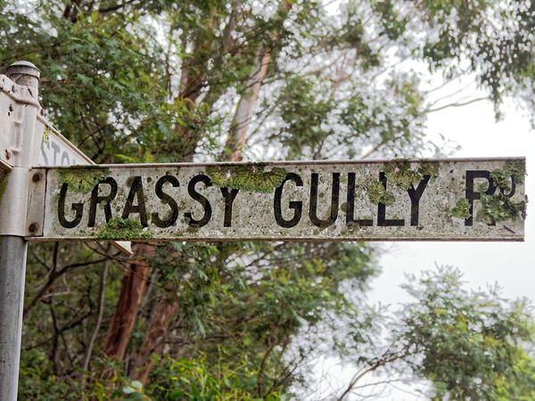 Grassy-Gully-Road-sign.jpeg
