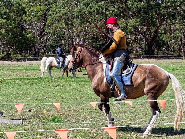 Jousting-training-day-145.jpeg