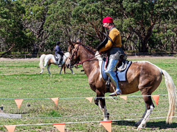 Jousting-training-day-146.jpeg