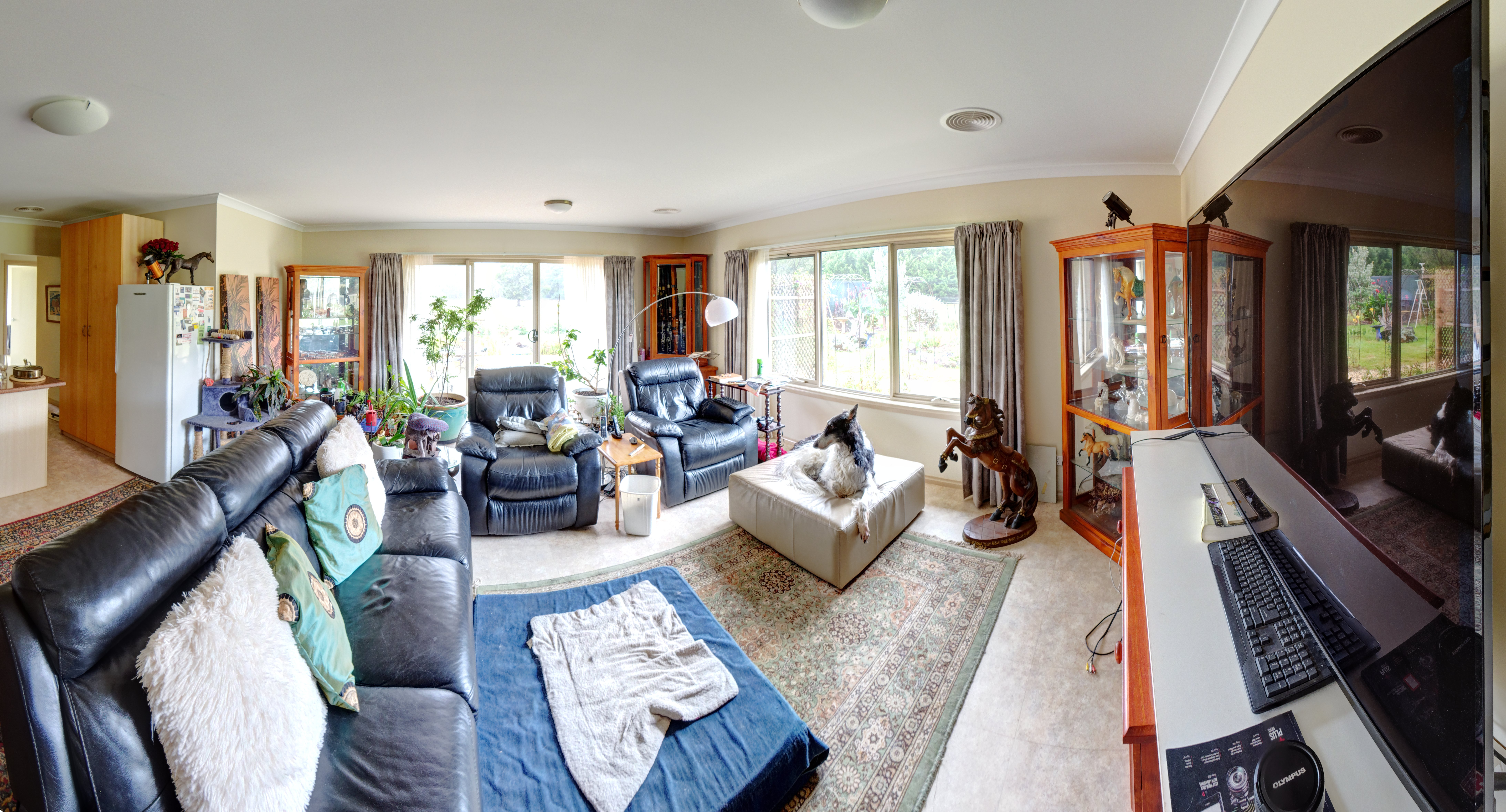 lounge-room-fisheye-cylindrical.jpeg