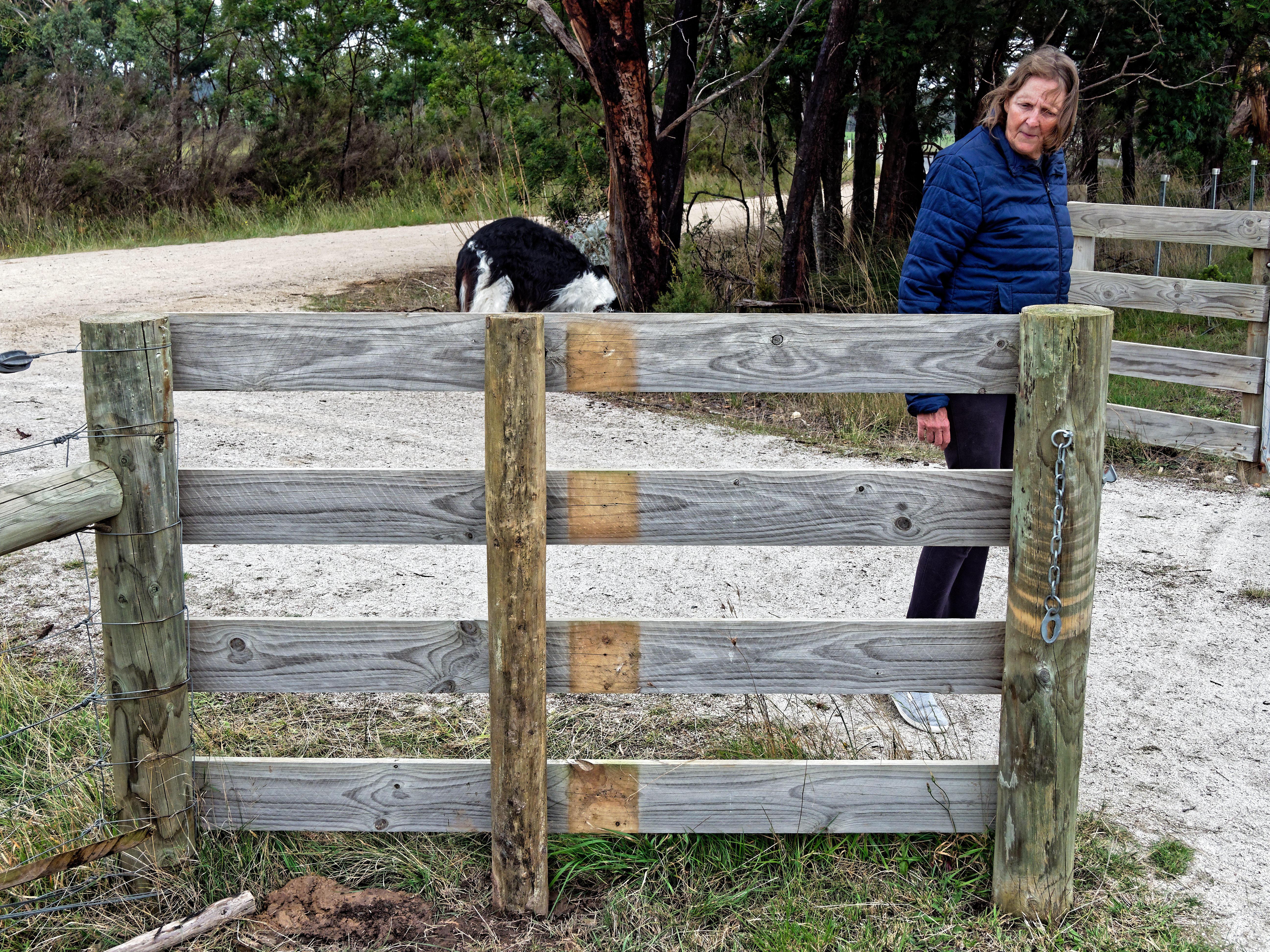 New-gates-2.jpeg