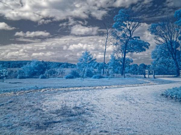 Driveway-infrared.jpeg