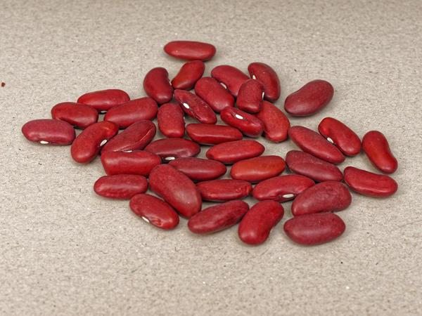 Beans-3.jpeg
