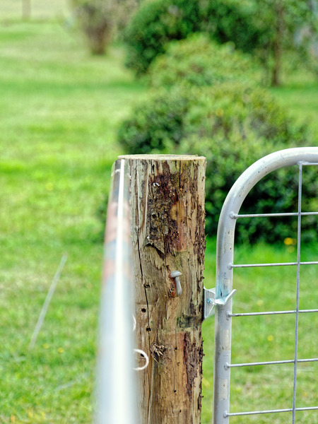 Gate-opener-3.jpeg