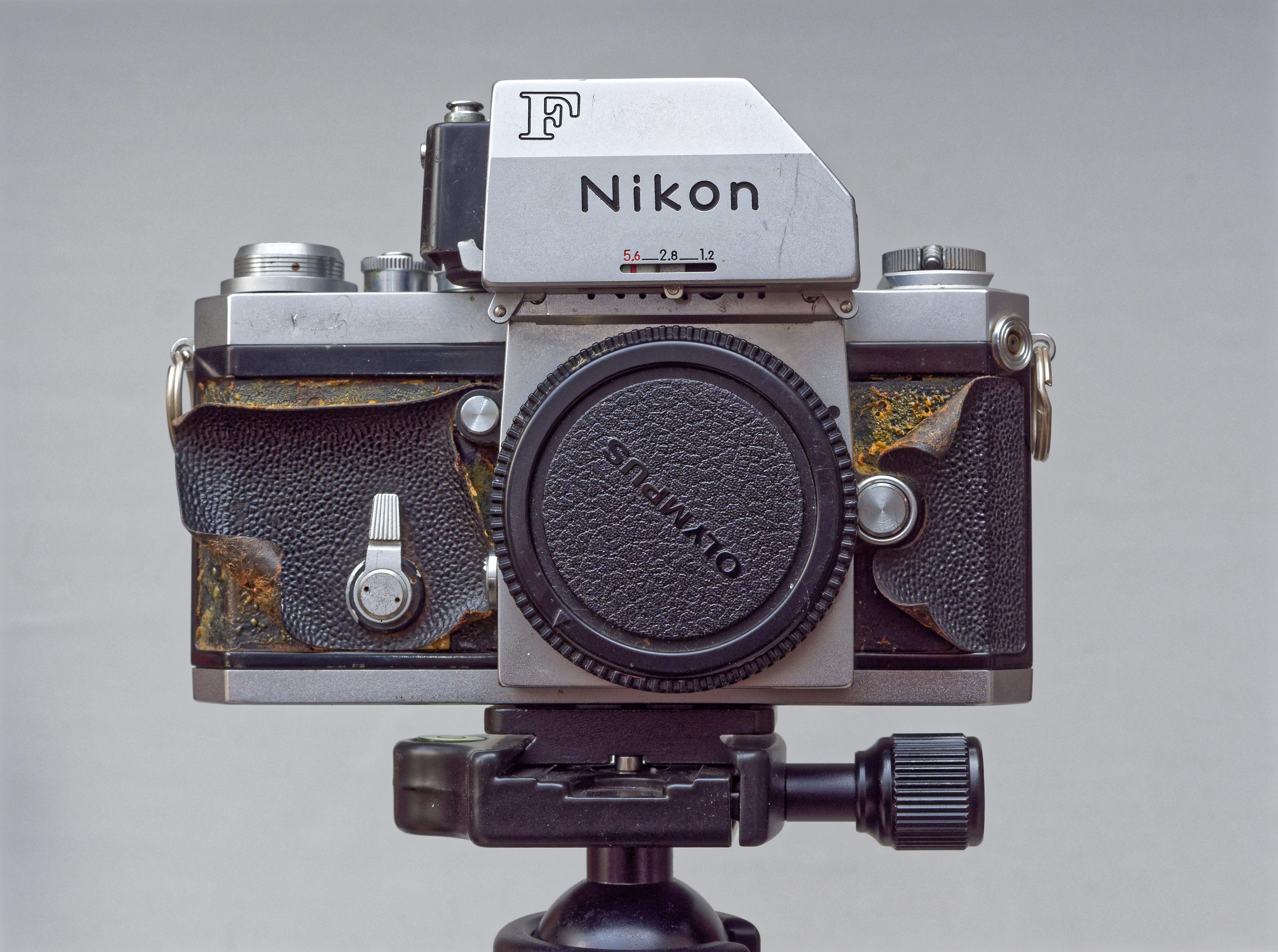 Nikon-F-6.jpeg