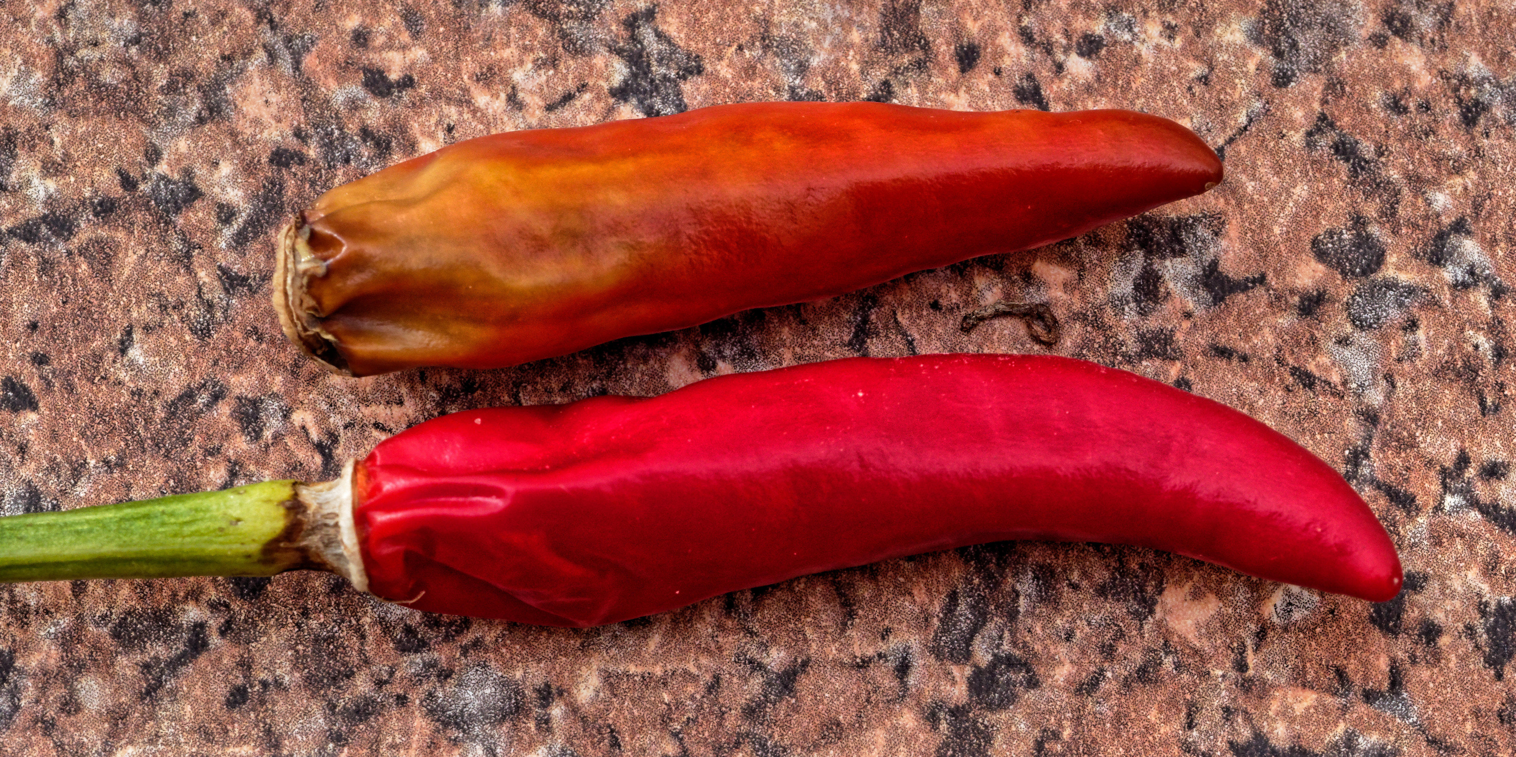 Chilis.jpeg