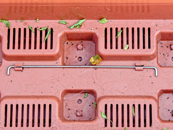 Planting-box-2.jpeg