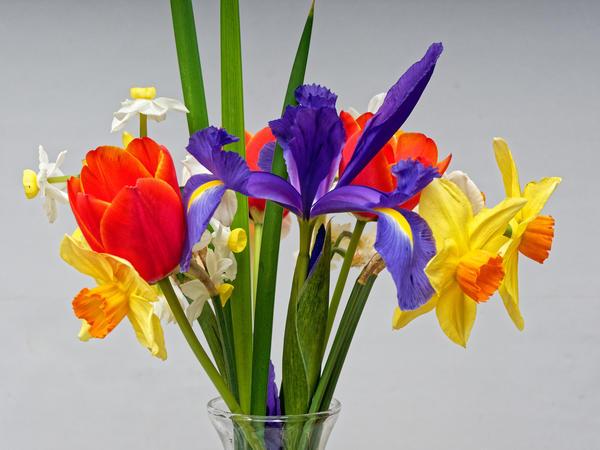 Bouquet-8.jpeg