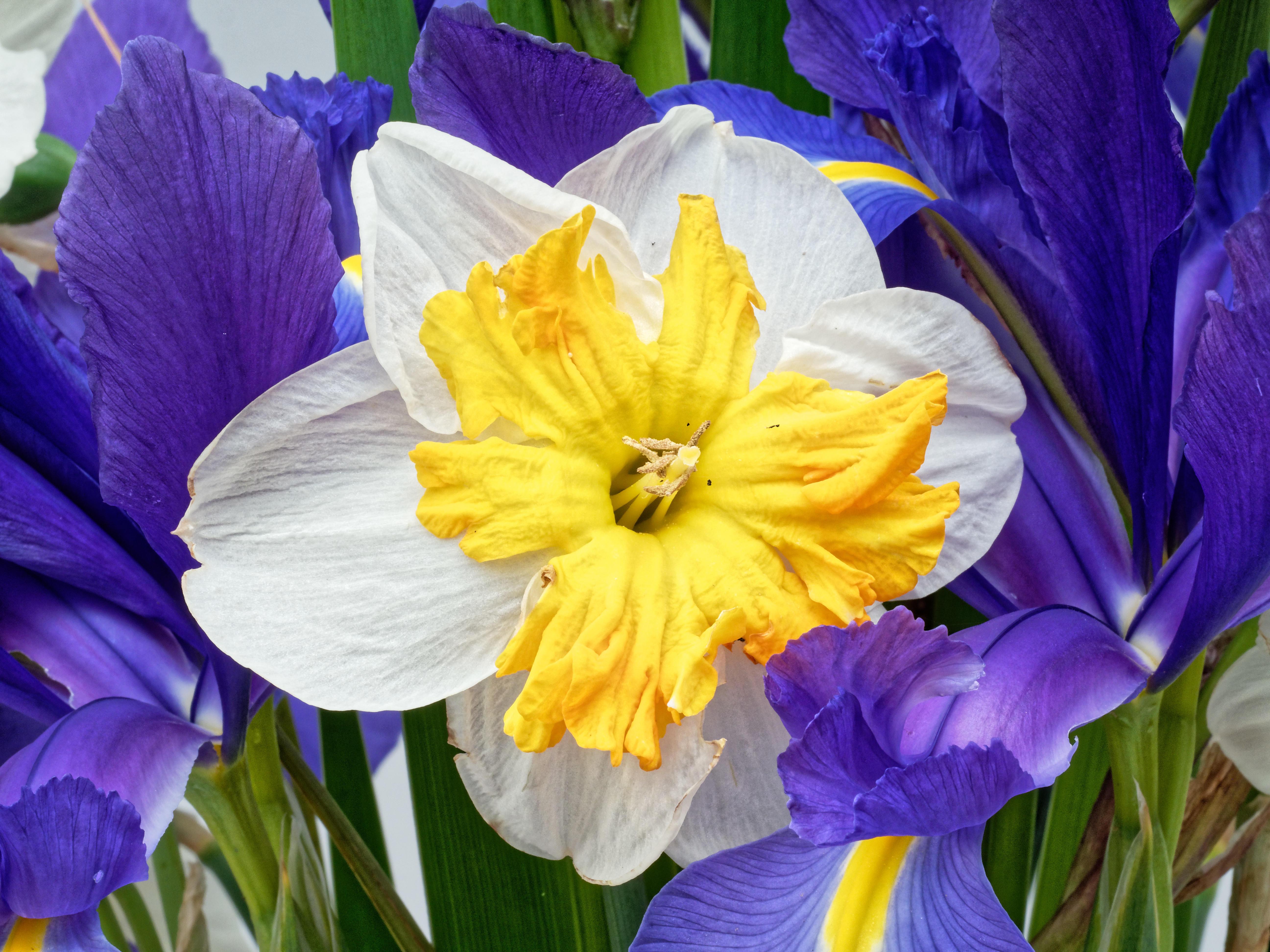 Bouquet-11.jpeg