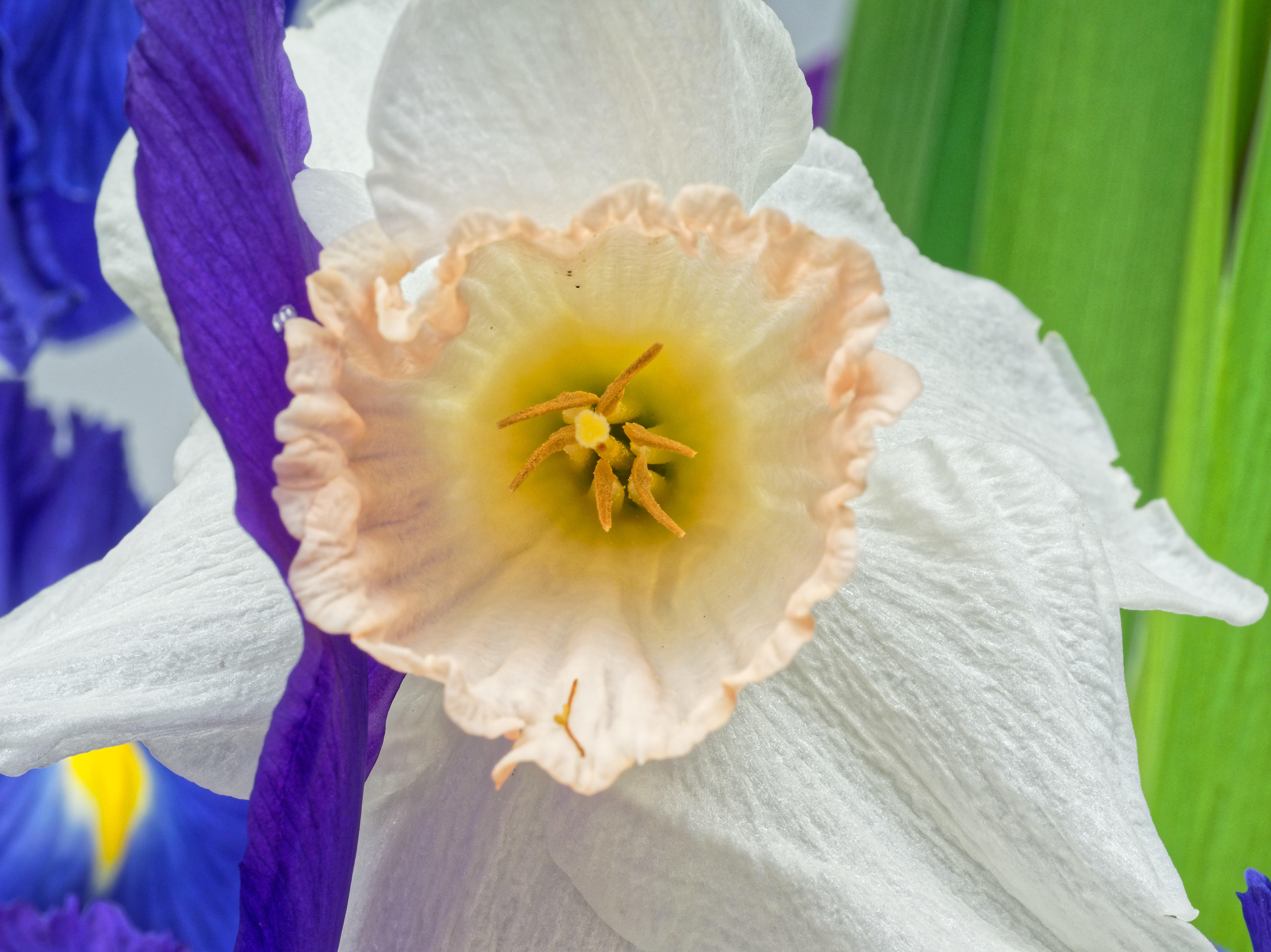 Bouquet-12.jpeg