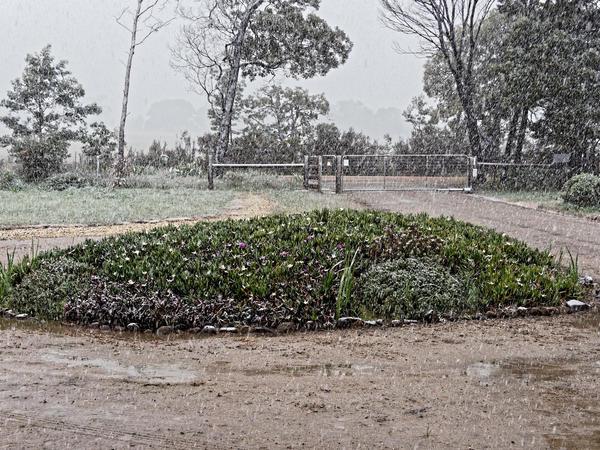 Snow-in-Dereel-11.jpeg