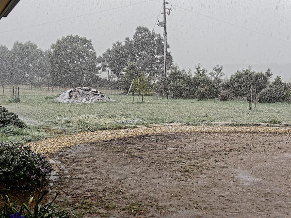Snow-in-Dereel-12.jpeg