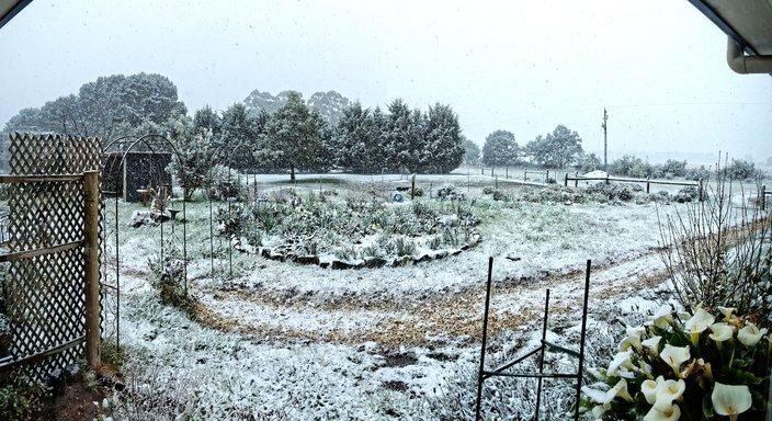 Snow-in-Dereel-16.jpeg