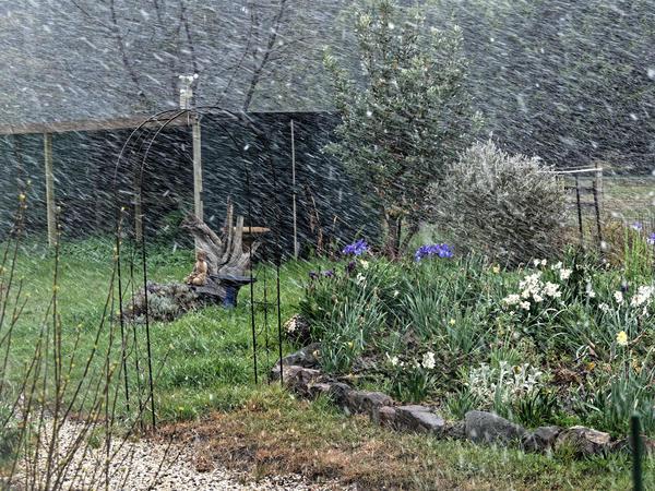 Snow-in-Dereel-8.jpeg