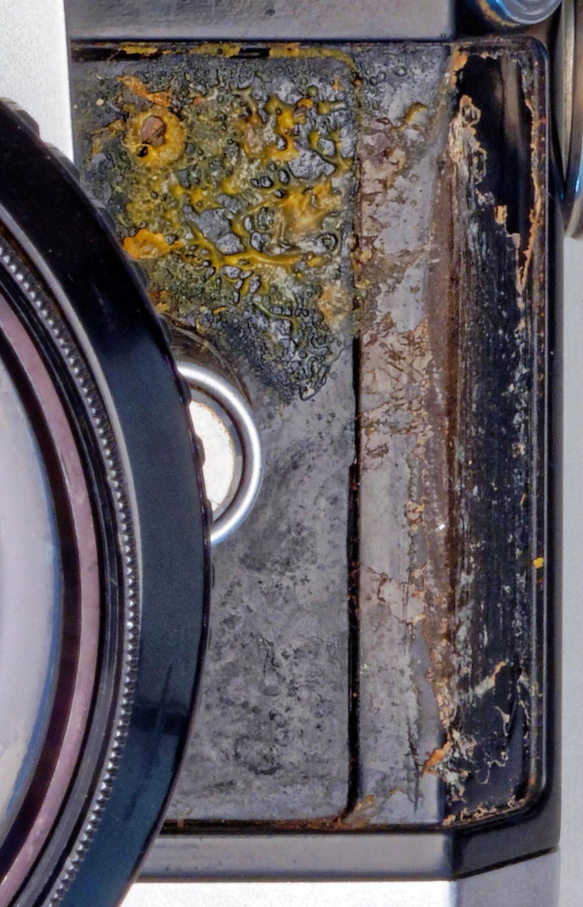 Nikon-F-2-detail.jpeg