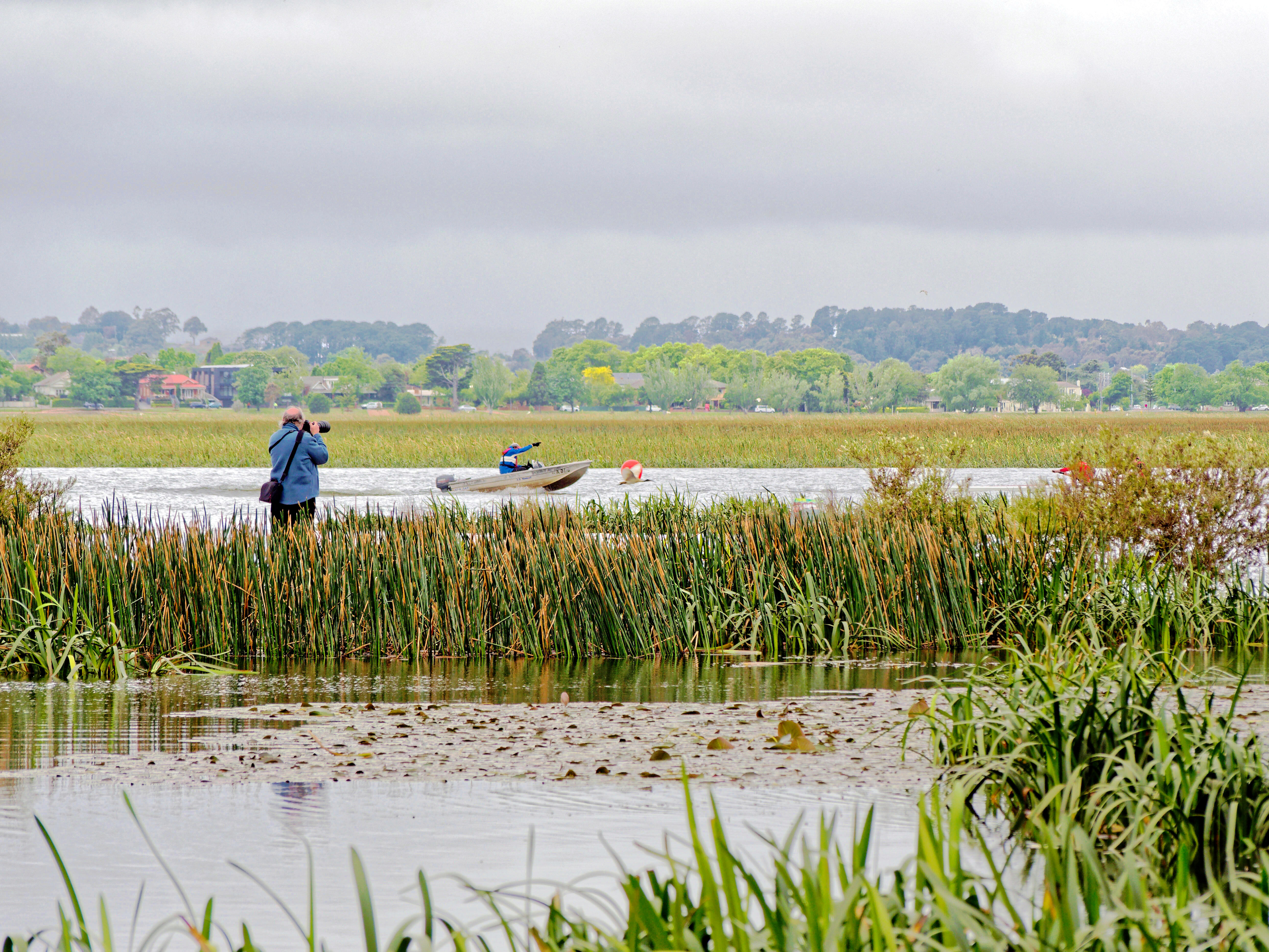 Lake-Wendouree-3.jpeg