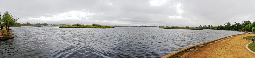 Lake-Wendouree-7.jpeg