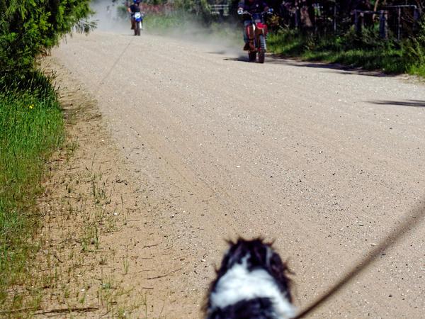 Bikers-1.jpeg