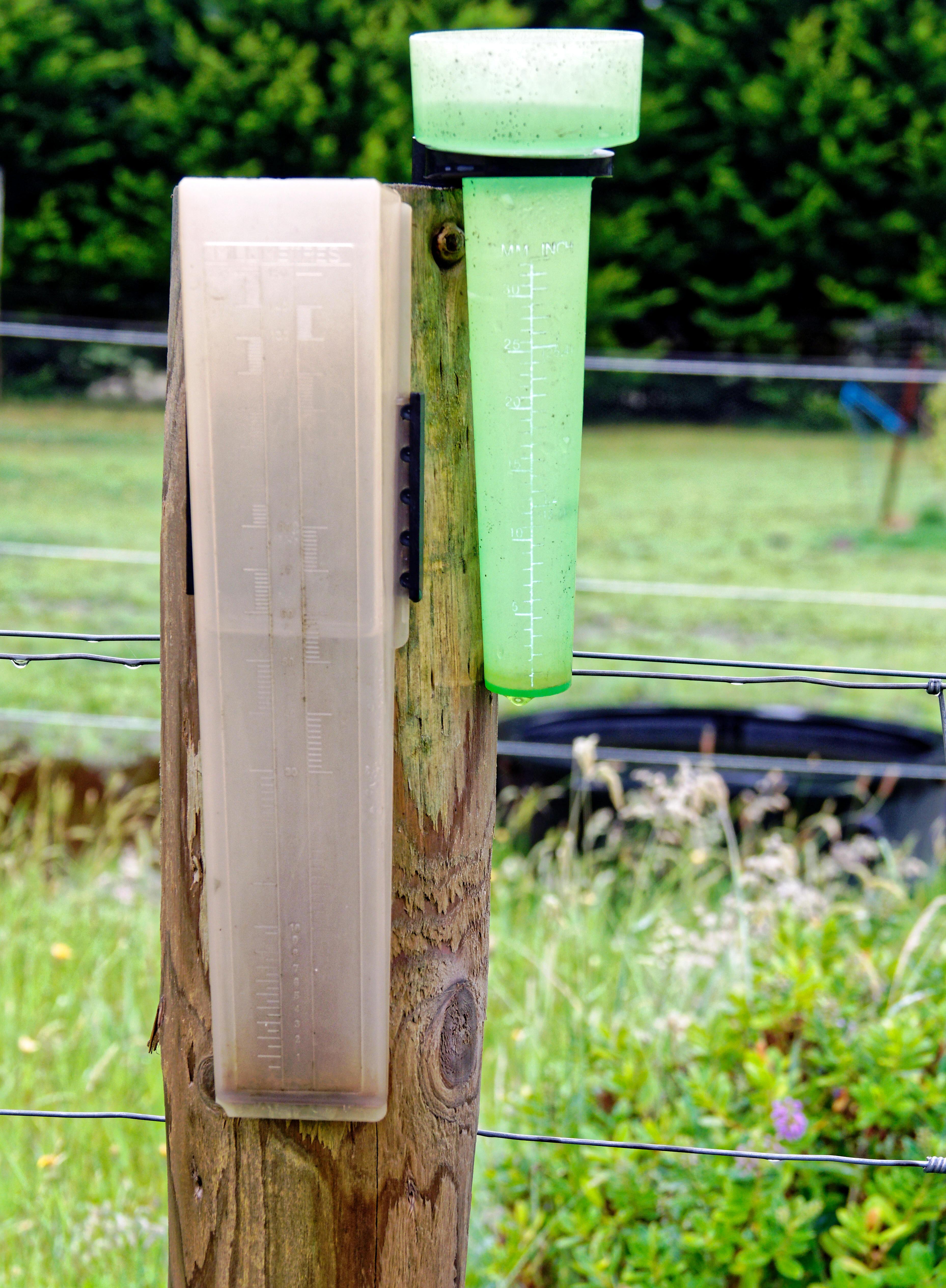 Rain-5.jpeg
