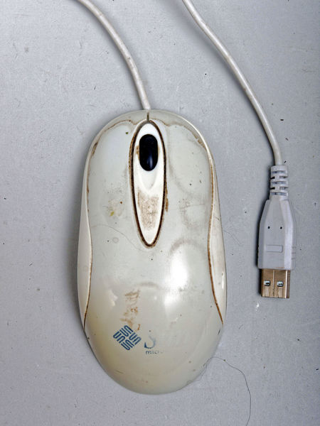 Sun-mouse.jpeg