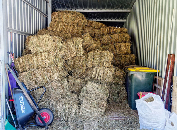 Hay-shed-3.jpeg
