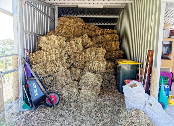 Hay-shed-4.jpeg