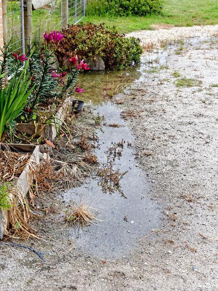Sprinkler-flood-7.jpeg