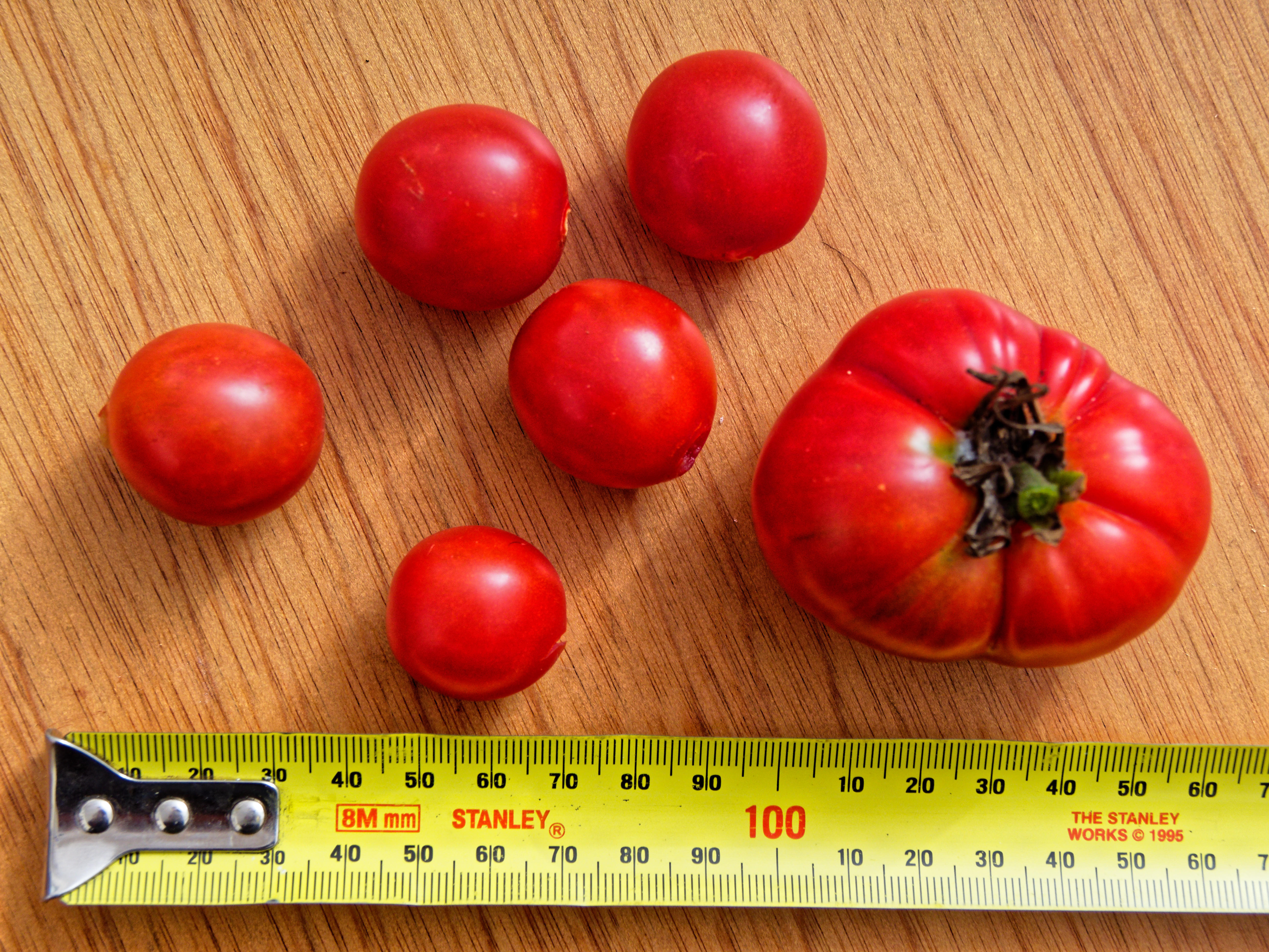This should be Tomatoes-2.jpeg.  Is it missing?