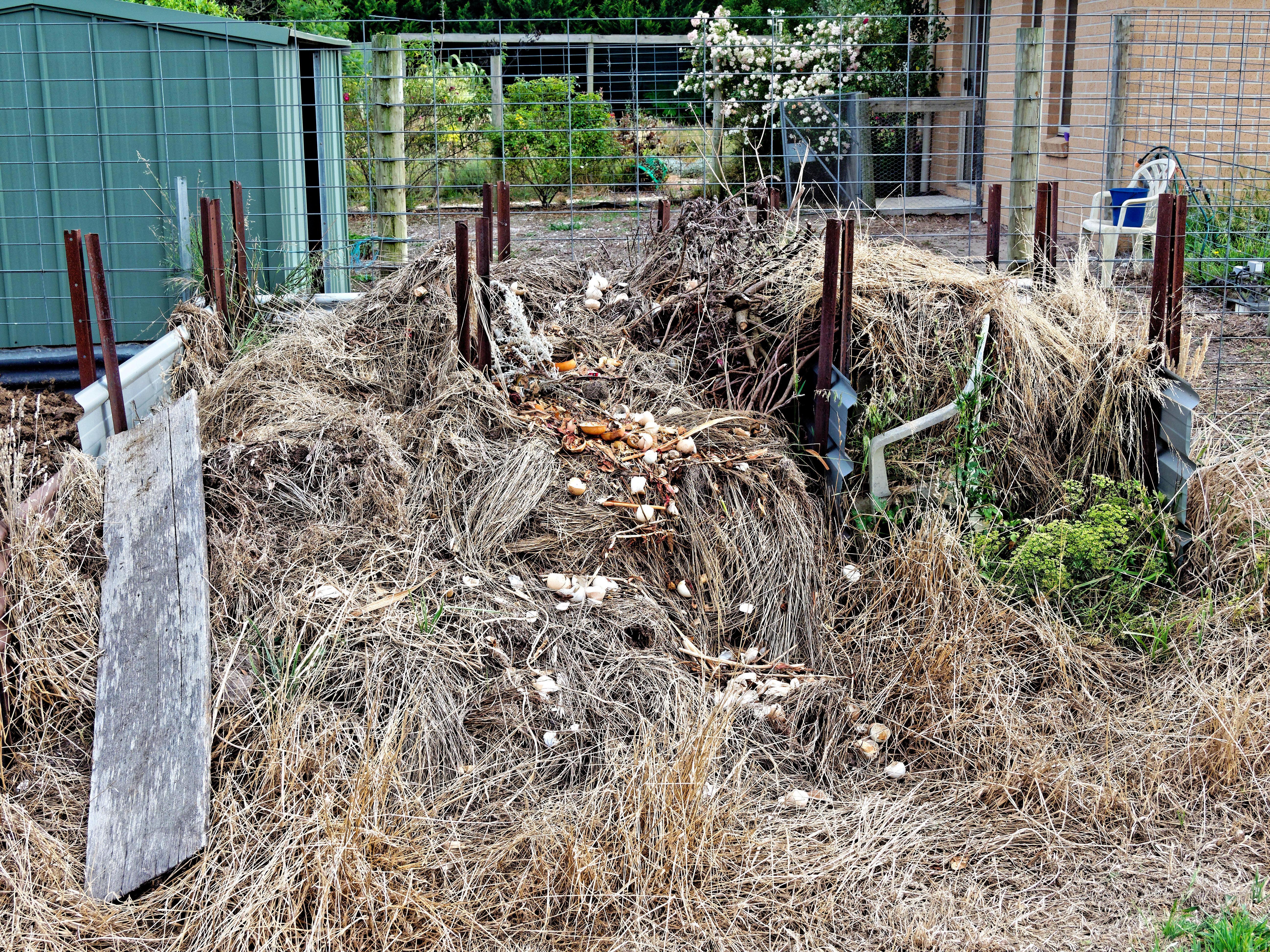 Compost-heap.jpeg
