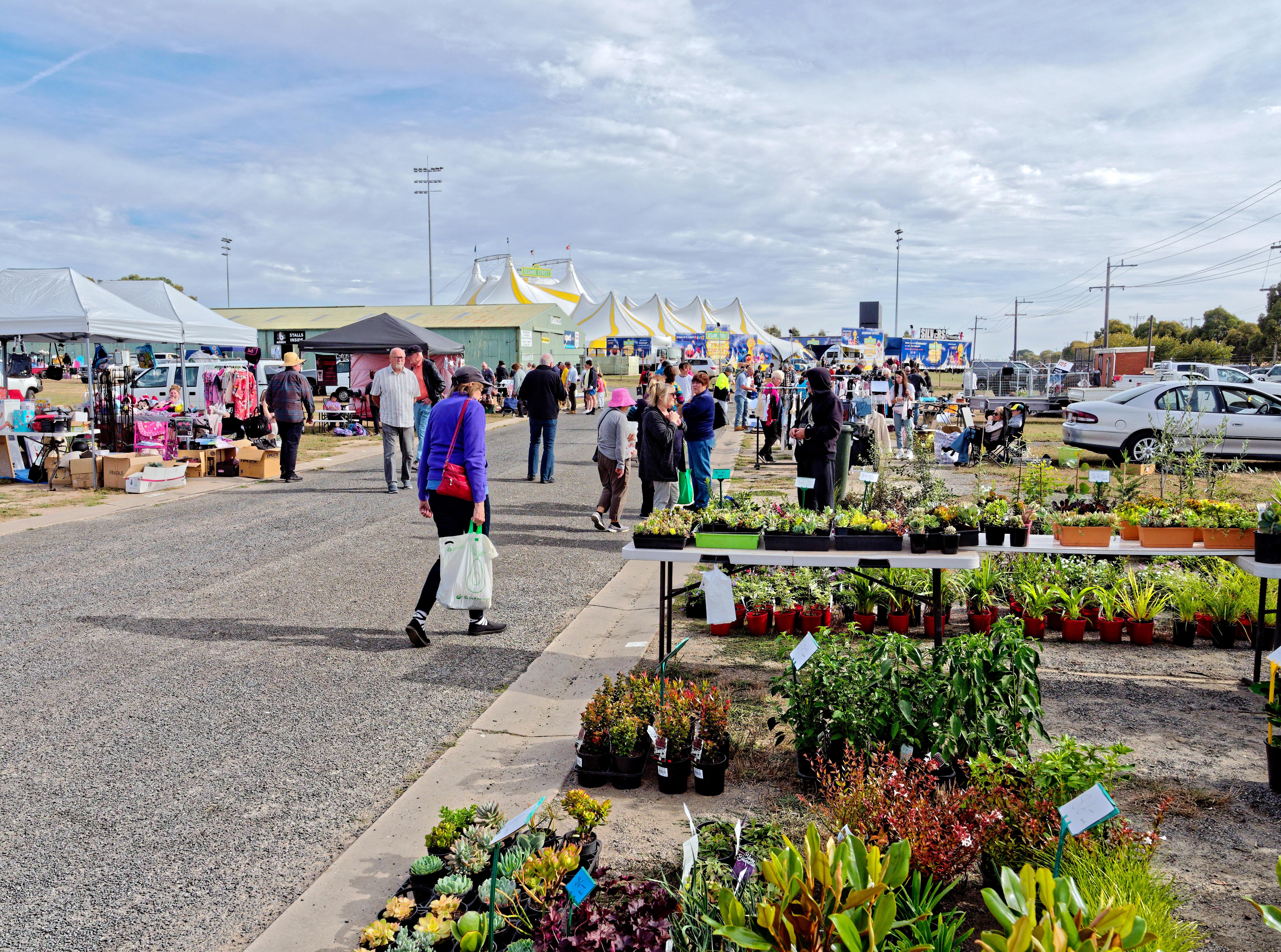 This should be Ballarat-Market-7.jpeg.  Is it missing?
