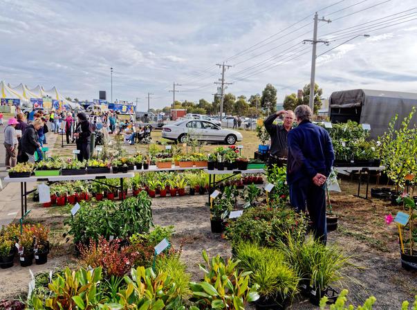 Ballarat-Market-8.jpeg