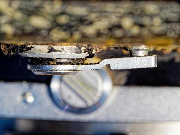 Nikon-F-3.jpeg