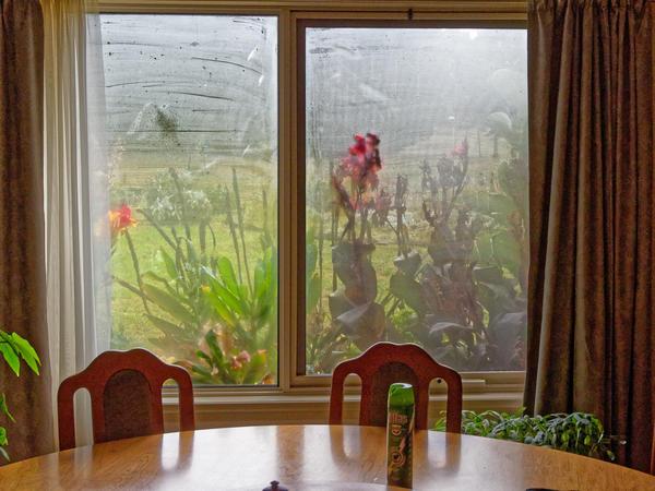 Misted-window-4.jpeg