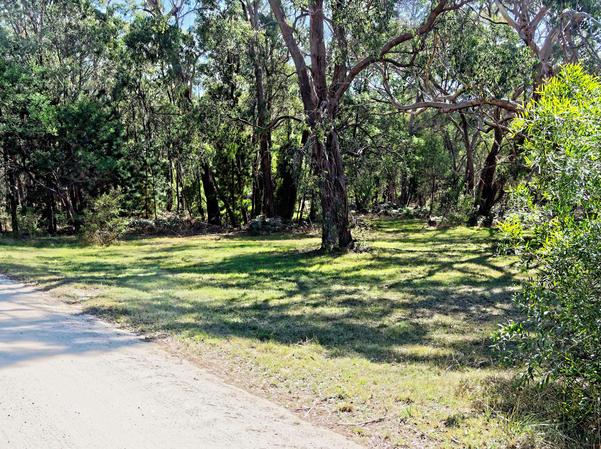 Park-landscape-1.jpeg