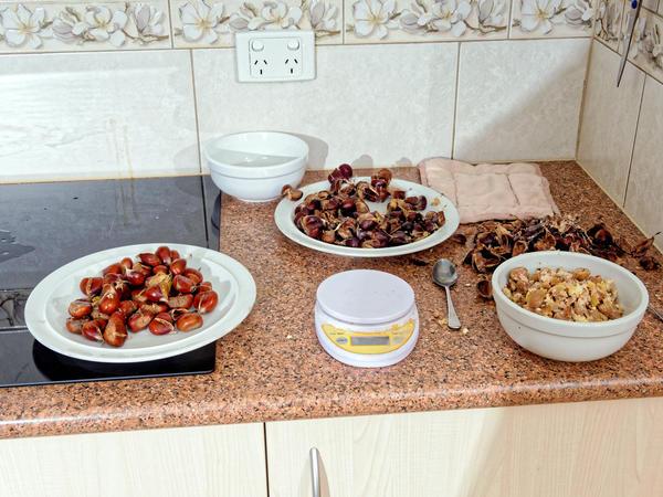 Chestnuts-2.jpeg