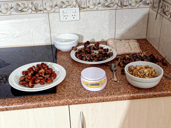 Chestnuts-3.jpeg